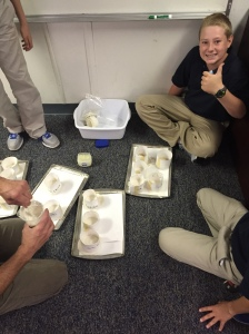 Mr. Berry's 6th grade Science class made fossils!